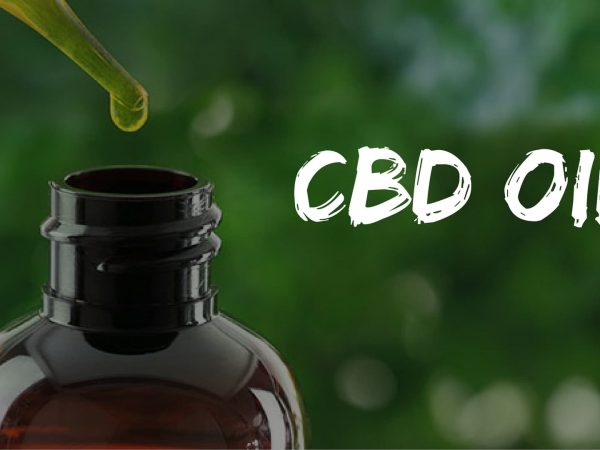 The Benefit Of Cbd Oils In Humans As Well As In Their Furry Friends